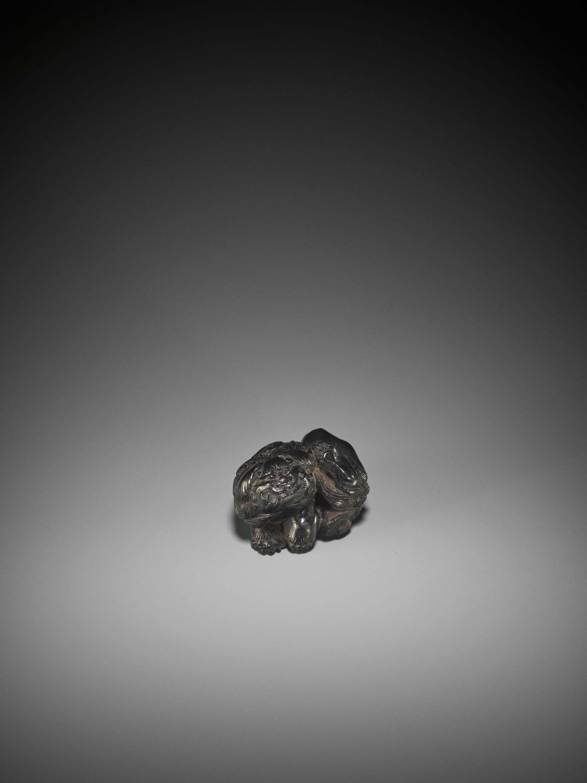 KOKEI: A RARE EBONY WOOD NETSUKE OF A SHISHI SCRATCHING HIS EAR - Image 3 of 3