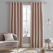 Catherine Lansfield, Eyelet Room Darkening Curtains Panel Size: 117 W x 229 D cm, Colour: Silver(HL7