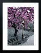 East Urban Home,'Central Park Blossom' Graphic Art RRP -£26.74 (14610/33 -HVO26722)