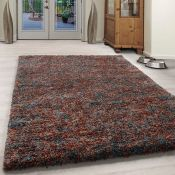 Hearn Shaggy Terracotta Rug Rug Size: Rectangle 200 x 290cm (HL7 - 3/13 -ALDZ1410.51945245)