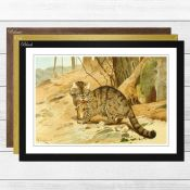 East Urban Home, Vintage Wild Cat (2)' by Wilhelm Kuhnert Framed Painting Print (BLACK FRAME) -