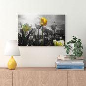 Zipcode Design , Tulip Meadow Art Canvas Photograph (40CM H X 60CM W) - RRP £55.99 (EXXP2076 -