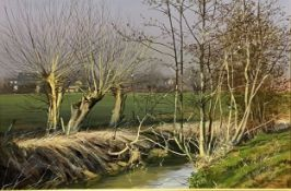 Peter Newcombe, Early Spring Slapton.