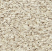 RRP £450 Bagged And Rolled Viceroy Beige 5M X 3.02M Carpet (055575)