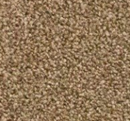 RRP £230 Bagged And Rolled Duches Supreme Oak 4M X2.5M Carpet (087761) (Appraisals Available On