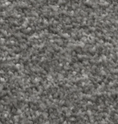 RRP £385 Bagged And Rolled Oyster Cove Grey 5M X 1.45M Carpet (082151)