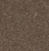 RRP £380 Bagged And Rolled Cardinal Chocolate 5M X 2.11M Carpet (057571)