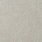 RRP £300 Bagged And Rolled Byran Dolphin 5M X 4.93M Carpet (159071)