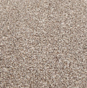 RRP £1280 Bagged And Rolled Emperor Camel 5M X 6.39M Carpet (091998)