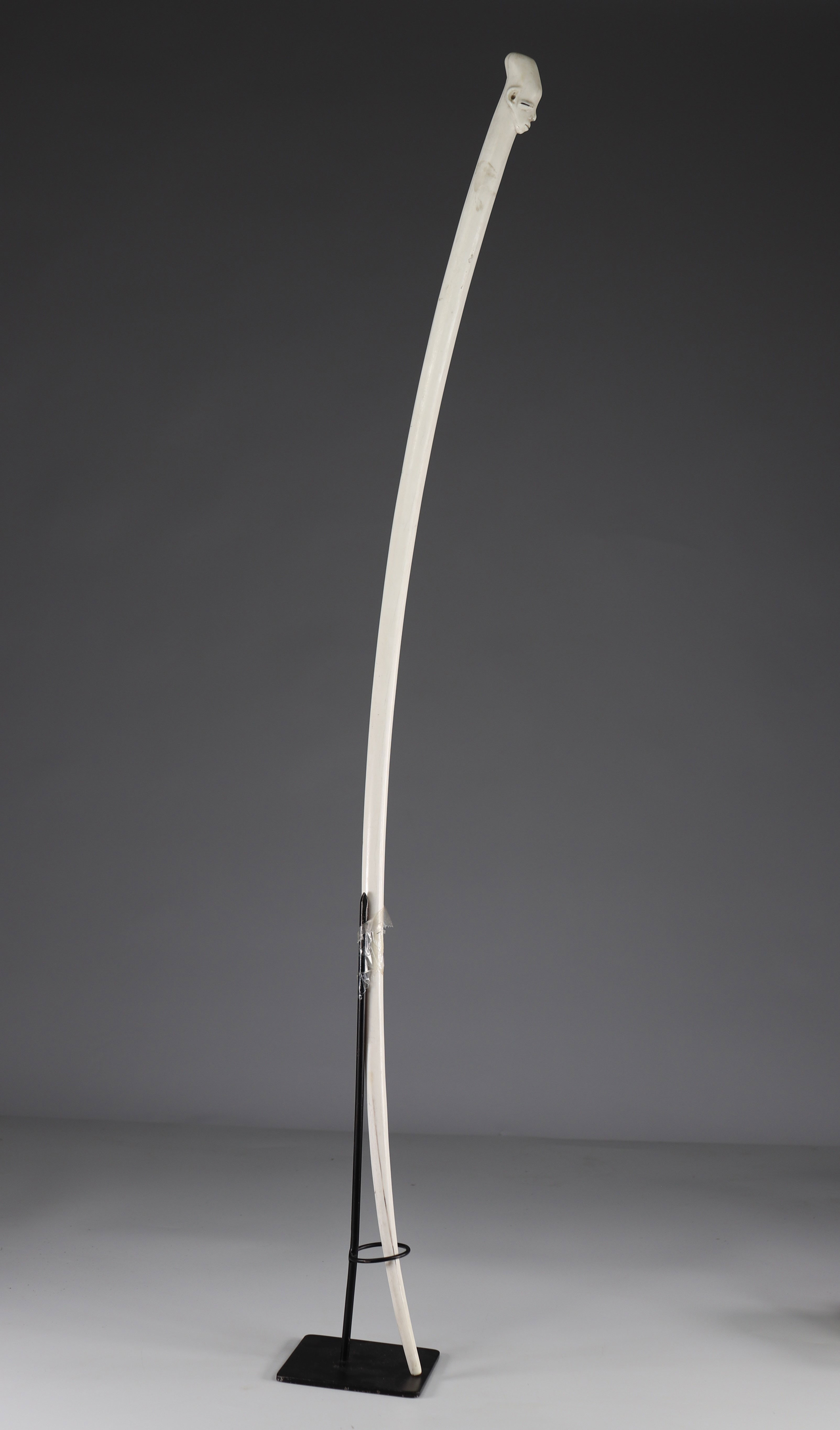 Rare prestige Mangbetu scepter in ivory -. Early 20th - Ground floor
