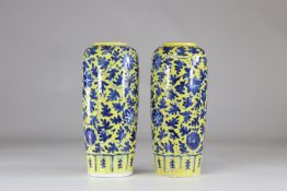 Asia pair of porcelain vases on a yellow background China?