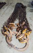 4 leg lifting chain