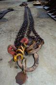 2 leg lifting chain