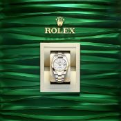 **BRAND NEW** Rolex Date-Just 41mm Oystersteel and Yellow Gold - White dial - Oyster Bracelet