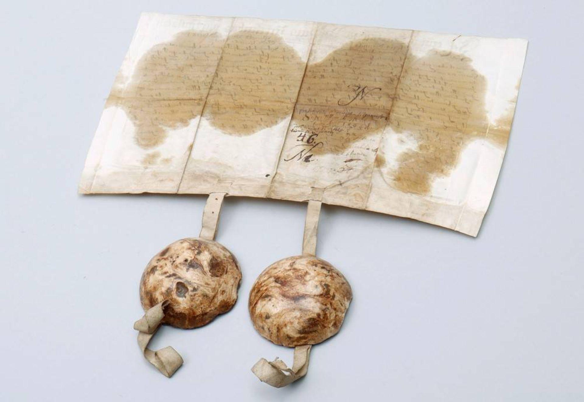 Dokument mit 2 Rotsiegeln, Gnesen (Heute Gnieznow, Polen), um 1594 - Image 2 of 7