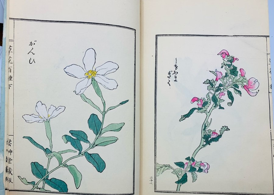 Book of Chinese woodblock prints of flowers, 58 colour illustrations plus descriptive text pages, - Image 4 of 6