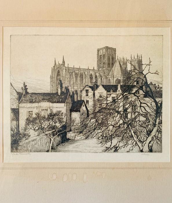 Collection of nine framed prints, comprising: Eli Marsden Wilson (1877-1965), Poplar Hawk Moth, - Image 3 of 10
