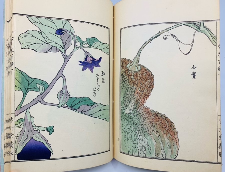 Book of Chinese woodblock prints of flowers, 58 colour illustrations plus descriptive text pages, - Image 5 of 6