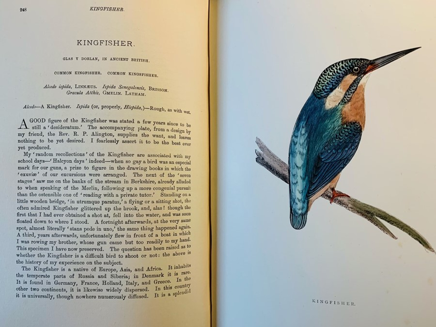 Morris, Rev. F. O. A History of British Birds, fourth edition, in six volumes, London: John C. - Image 2 of 5