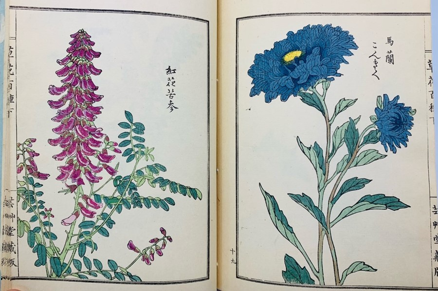 Book of Chinese woodblock prints of flowers, 58 colour illustrations plus descriptive text pages, - Image 2 of 6