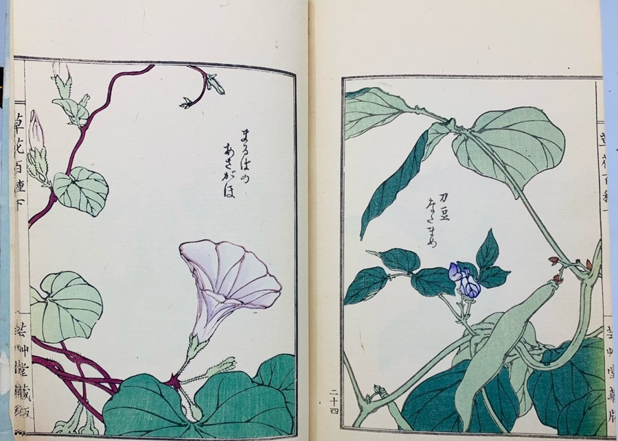 Book of Chinese woodblock prints of flowers, 58 colour illustrations plus descriptive text pages, - Image 3 of 6