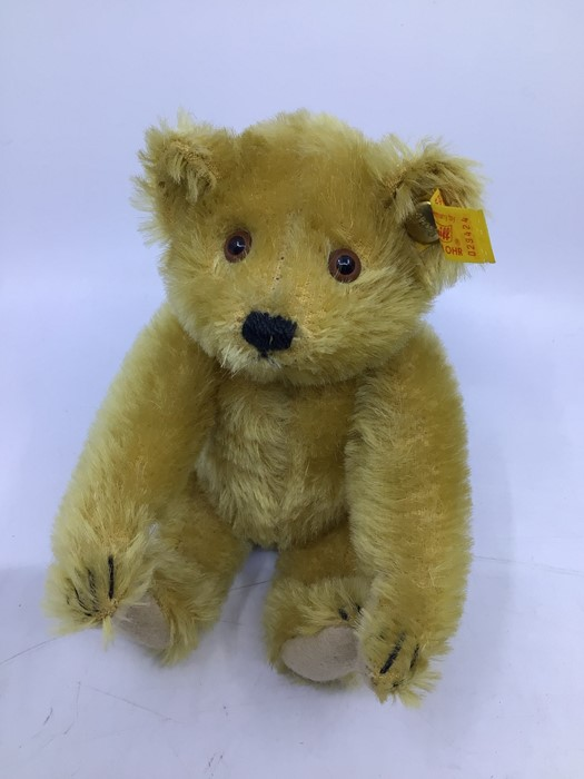 Steiff: A collection of five yellow tag Steiff bears to comprise: 029585; 029271; 029424; 030574; - Image 3 of 6