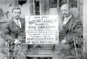 """Marshall & Sons: An early 20th century, Marshall & Sons, Oxford St, Ripley, enamel sign, """"Now - Image 3 of 5"""