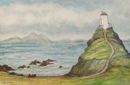 Lois Webster FRSA (British),Llandwyn Island, Anglesey, watercolour and ink, signed, approx 25cm x