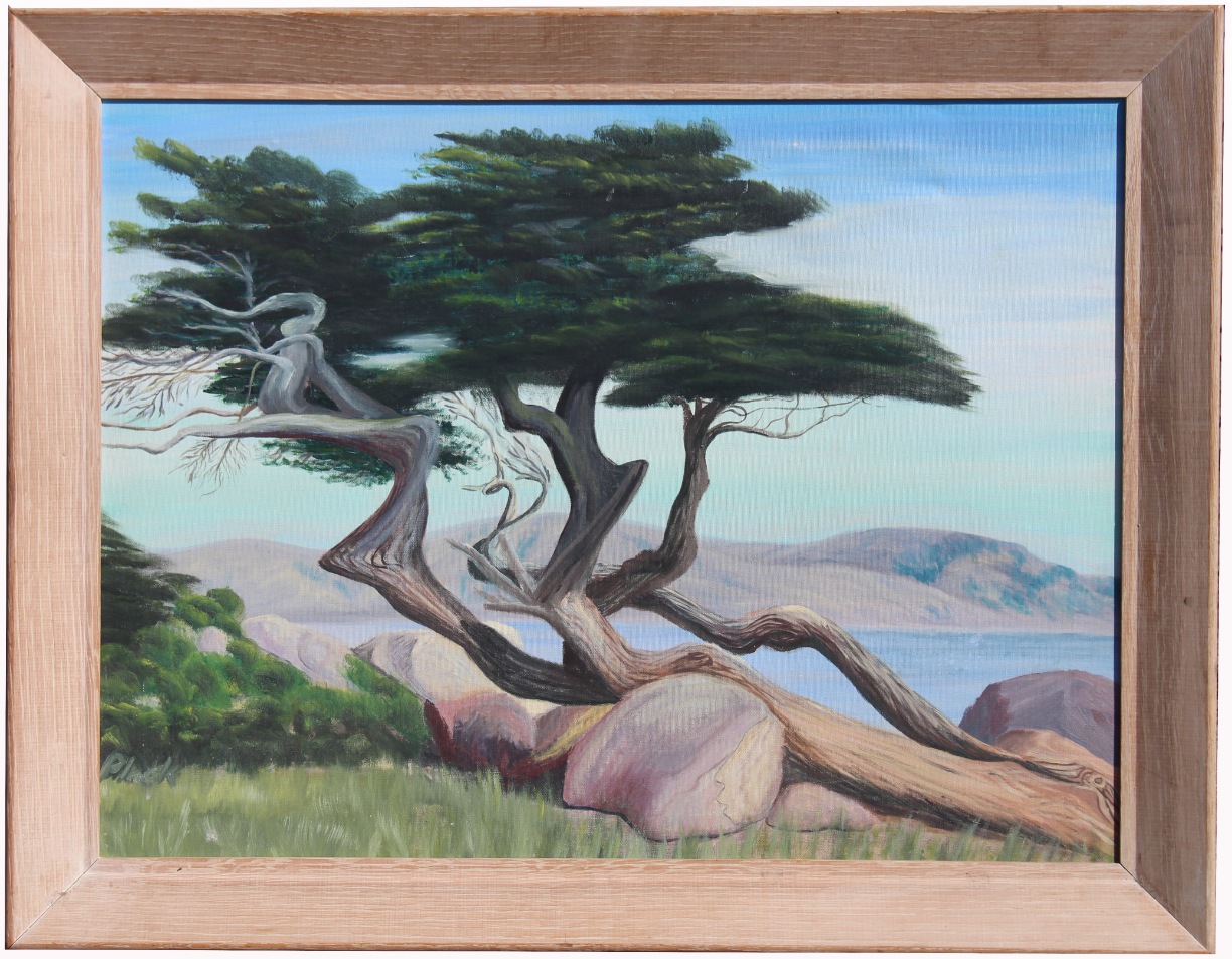 Signed, 20th C. Painting of a Monterey Cypress