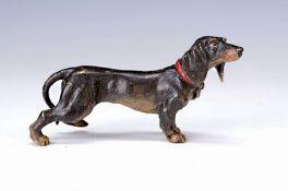 Wiener Bronze, 2.H.20.Jh., großer Dackel, bunt staffiert,