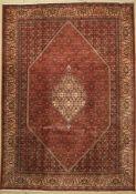 Bidjar, Persien, ca. 40 Jahre, Wolle auf Baumwolle, ca.