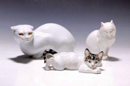 3 Porzellanfiguren Katzen,  1x Rosenthal, Th. Kärner,