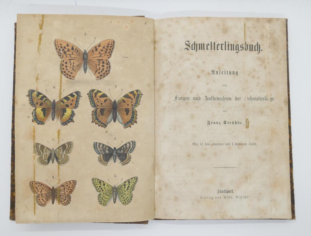 FRANZ STRÄSSLE (1817-1906)Schmetterlingsbuch: Anleitung zum fangen und aufbewahren der Schmetterling - Image 2 of 3