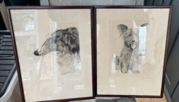 """Pair of Framed and Pencil Signed Ehersbach signed dog prints of Afghan and Terrier - 8 """" x 6 1/2"""""""