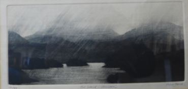 A signed Peter Ford limited edition etching, Fir Island - Coniston, 14 x 28cms, framed