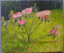 British School, study of flowers in a field, oil on board, 66 x 78cms, unframed