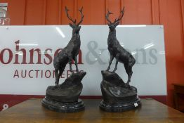 A pair of large French style bronze stags, on black marble plinths, 74cms h