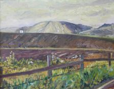 Noel Brannan, Desford Evening, oil on board, 34 x 43cms, framed
