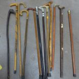 Twelve walking sticks **PLEASE NOTE THIS LOT IS NOT ELIGIBLE FOR POSTING AND PACKING**