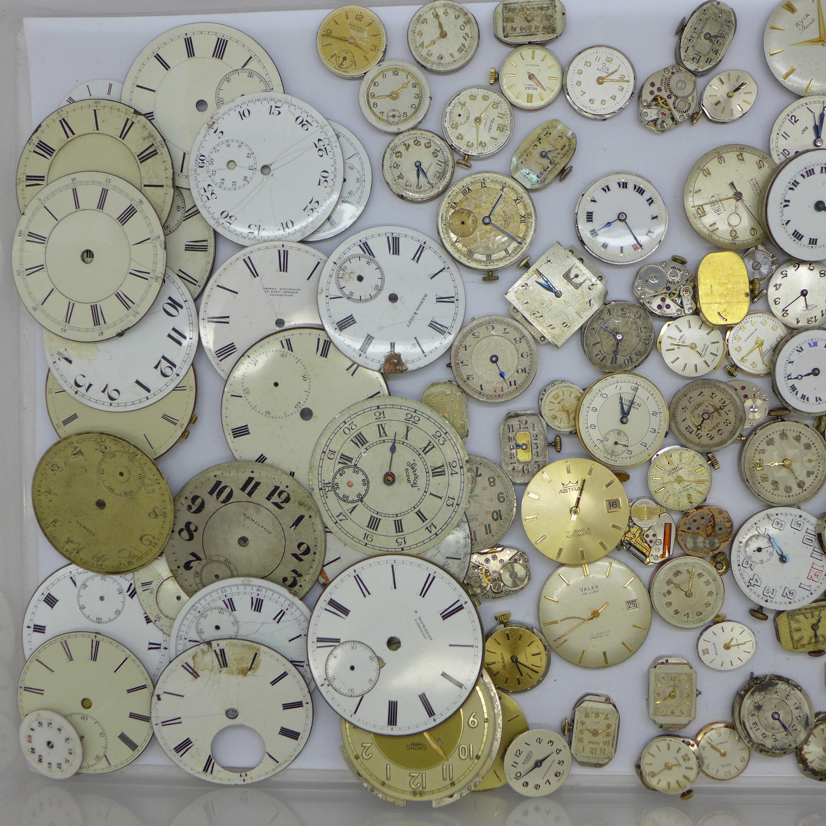 Lady's and gentleman's wristwatch movements including Tissot, Record, Waltham, Thos Russell, Rotary, - Image 2 of 3