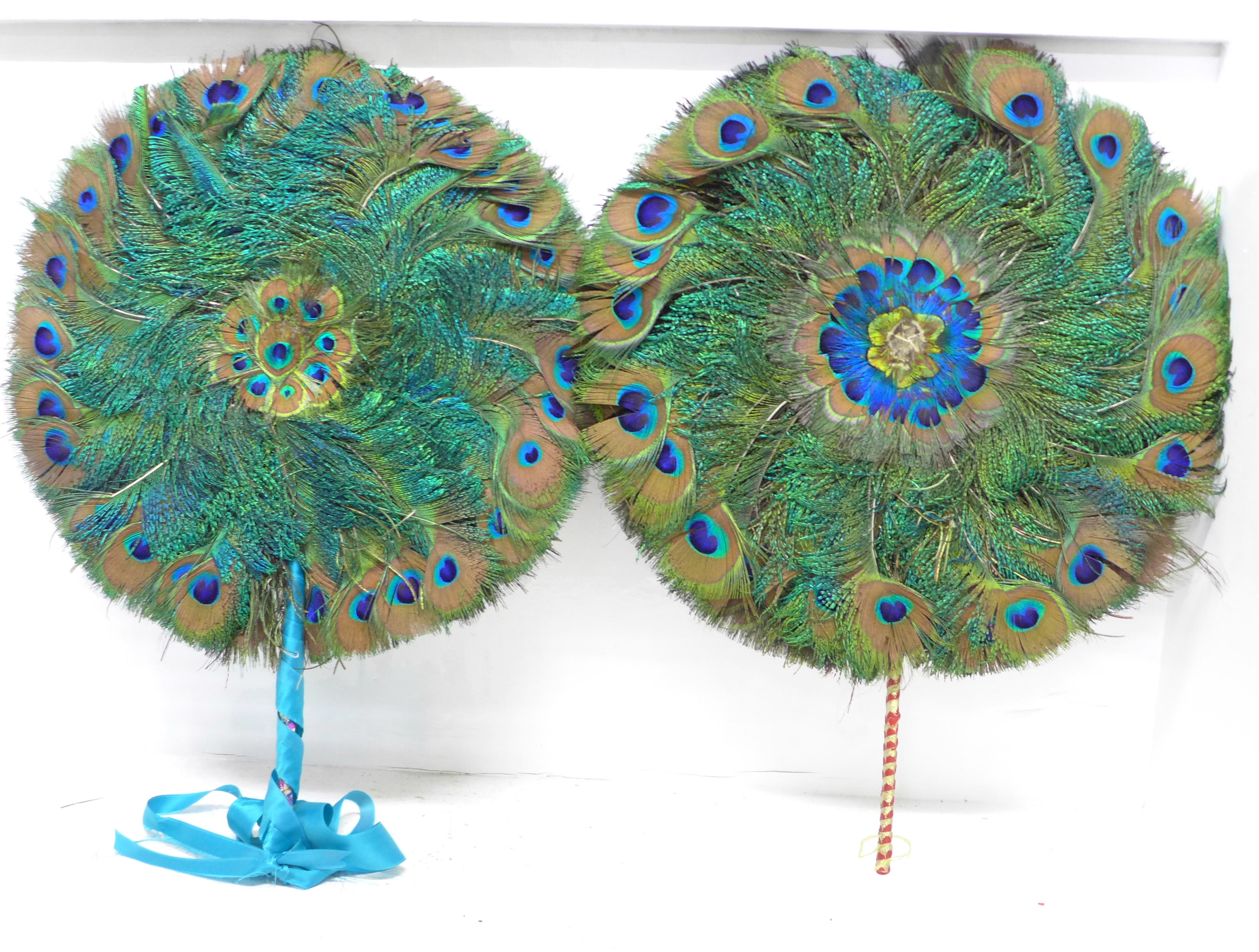 A pair of peacock feather fans