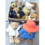 Seven Teddy bears including Paddington