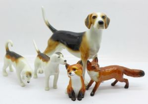 Three Beswick hounds, one a/f and two foxes, one fox a/f