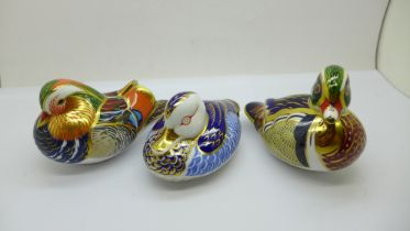 Three Royal Crown Derby paperweights; Mandarin Duck with gold stopper and original box, Carolina