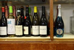 A quantity of miscellaneous wines and related to include Cantina Zaccagnini, Campo Viejo Rioja