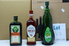 A quantity of assorted spirits and related items to include Trevethan passion fruit and orange