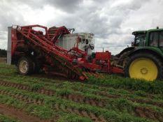 Dewulf GK11s Carrot Harvester