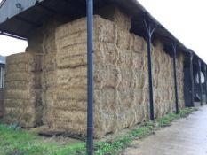 85 MF 2270 90x120x240 Bales Only Meadow Hay in a barn - 43t approx. Robert Lenton Ltd., Corpus Chris