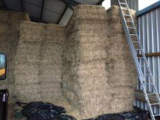 400 Flat 8 Bales only Meadow Hay in a Barn in Arcusin 14 Bale packs. N.W. Dolby, Lockers, PE28 3YS