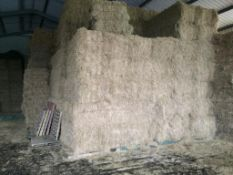 50 Welger D4000 80x70x240 Bales only Meadow Hay in a barn - 12t approx. NW Dolby., Lockers, PE28 3YS